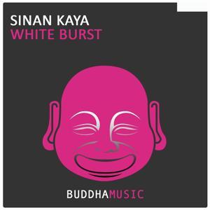 White Burst