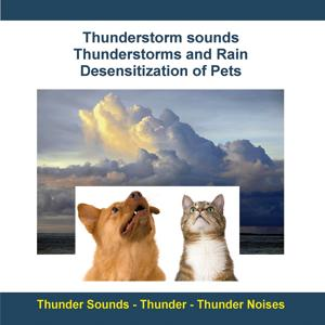 Thunderstorm Sounds - Thunderstorms and Rain - Desensitization of Pets