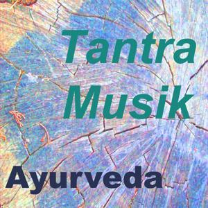 Tantra musik (Vol. 2)