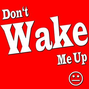 Don't Wake Me Up (Single Version)
