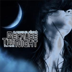 Because the Night (The Remix)