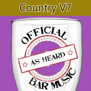Official Bar Music: Country, Vol. 7