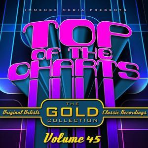 Immense Media Presents - Top of the Charts, Vol. 45