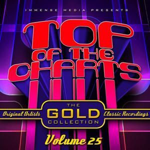 Immense Media Presents - Top of the Charts, Vol. 25