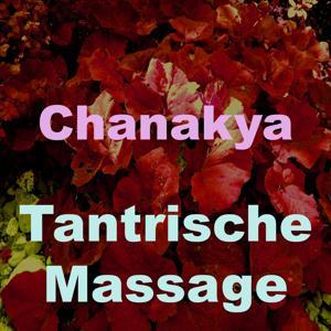 Tantrische massage (Vol. 3)