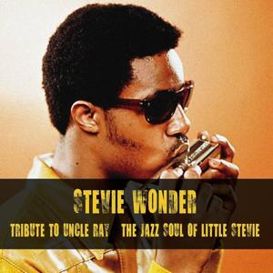 Tribute to Uncle Ray / The Jazz Soul of Little Stevie