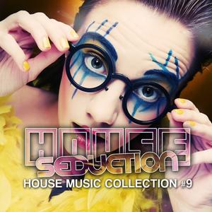 House Seduction, Vol. 9