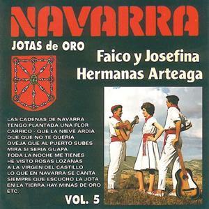 Jotas de Oro : Navarra, Vol. 5