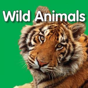 My First Playlist: Wild Animals