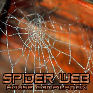 Spider Web (House Compilation)