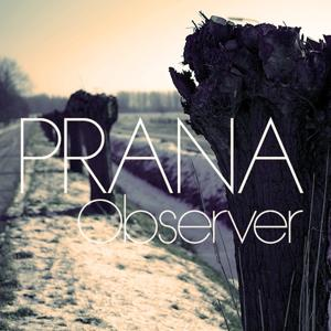 Observer (2013 Edit)