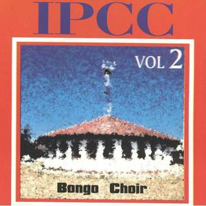 Bongo Choir, Vol. 2