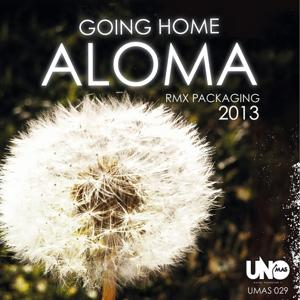 Going Home (Remix 2013)