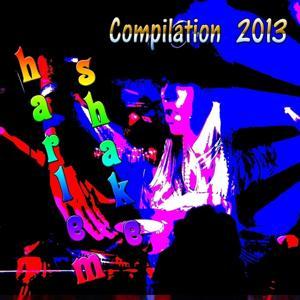 Harlem Shake Compilation 2013