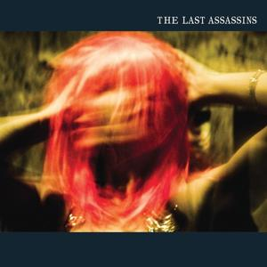 The Last Assassins