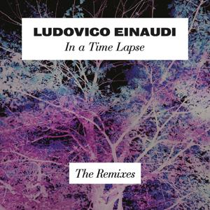 In A Time Lapse - The Remixes