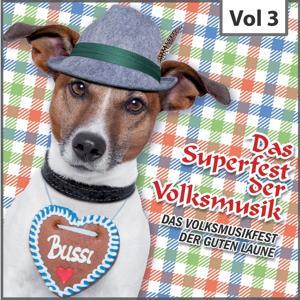 Das Superfest der Volksmusik, Vol. 3