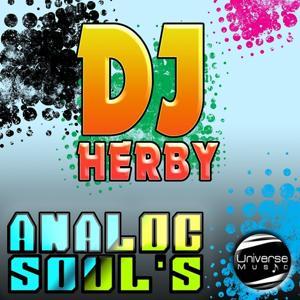Analog Soul's