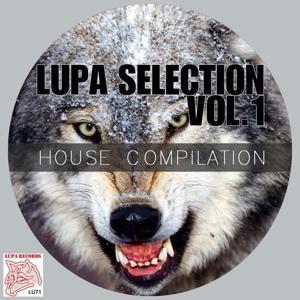Lupa Selection, Vol. 1