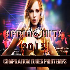 Spring Hits 2013 (Compilation Printemps)
