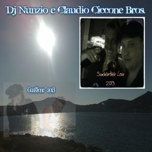 Summertime Love / Guaglione' 2013