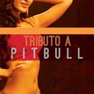 Tributo a Pitbull