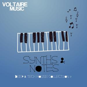 Synths and Notes 7.0