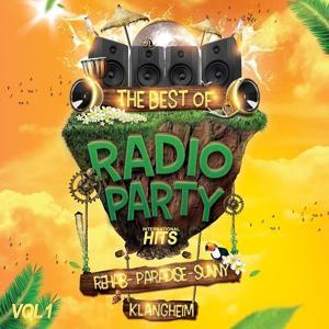 Radio Party Hits (Vol 1)