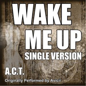 Wake Me Up (Originally Performed By Avicii)