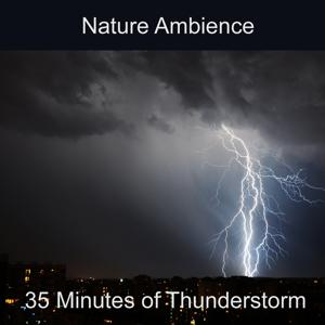 Thunderstorm Nature Ambience (Rain, Thunder, Lightning, Ambience, Nature Sound, Storm, Wind, Weather, Atmosphere, Soothing, Background)