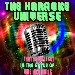 That's What Ig Et (Karaoke Version) [in the Style of Nine Inch Nails]