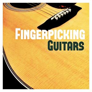 Fingerpicking Guitars
