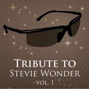 Tritbute to Stevie Wonder, Vol. 1