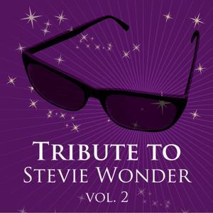 Tritbute to Stevie Wonder, Vol. 2