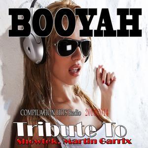 Booyah: Tribute to Showtek, Martin Garrix
