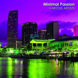 Minimal Passion, Vol. 3