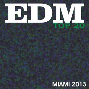 Edm Top 20 Miami 2013