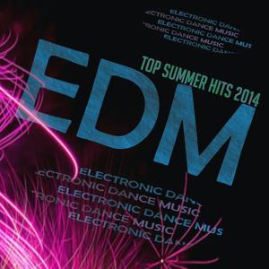 Edm Top Summer Hits 2014 (Top 20 Hits Summer Dance 2014)