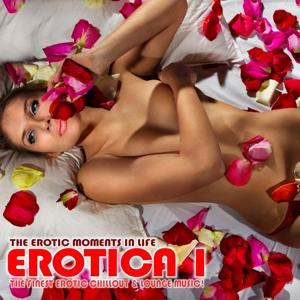 Erotica, Vol. 1 - The Erotic Moments Of Life (The Finest Erotic Chill Out and Lounge Music)