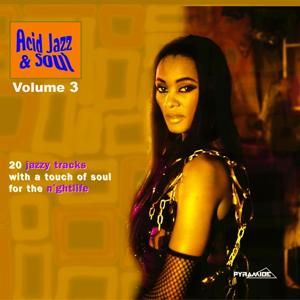 Acid Jazz & Soul: 20 Jazzy Tracks With a Touch of Soul for the Nightlife, Vol. 3