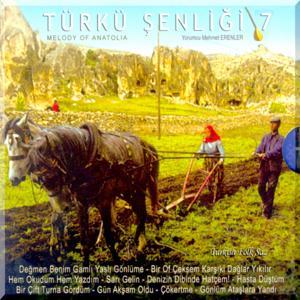 Türkülerimiz Türkü Şenliği, Vol. 7
