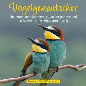 Vogelgezwitscher: Ein traumhafter Sommertag
