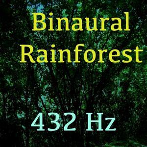 Binaural Rainforest