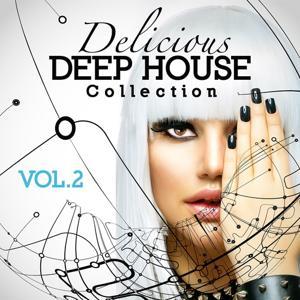 Delicious Deep House Collection, Vol. 2