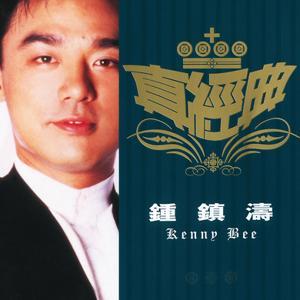 Zhen Jin Dian-Kenny B