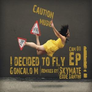 I Decided To Fly EP