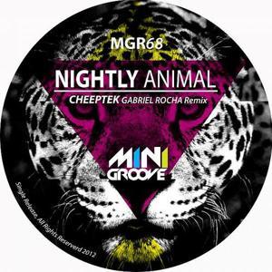 Nightly Animal