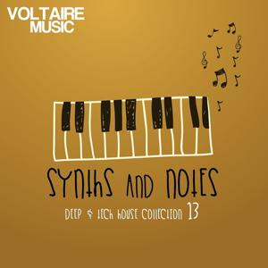 Synths And Notes, Vol. 13 (Deep & Tech House Collection)