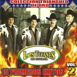 15 Primeros Exitos Vol. 2