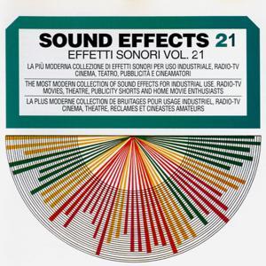 Sound Effects No. 21 (Arms, Clocks, Doors, Human Sounds, Telephones, Instruments & Sport)